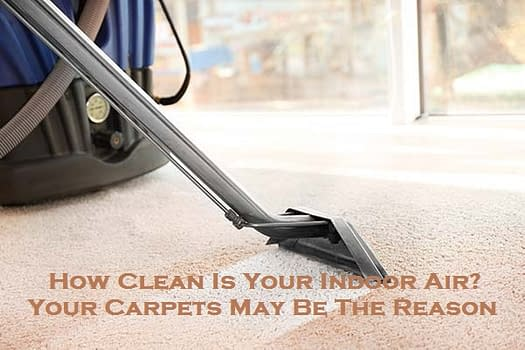How Clean Is Your Indoor Air? Your Carpets May Be The Reason