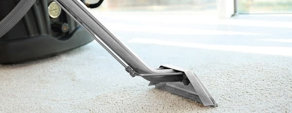Why is Carpet Steam Cleaning Necessary?