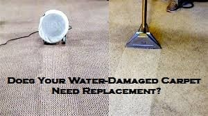 Does Your Water-Damaged Carpet Need Replacement?