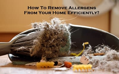 How To Remove Allergens From Your Home Efficiently?