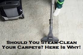 Should You Steam-Clean Your Carpets? Here Is Why!