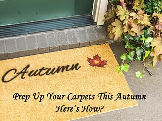 Prep Up Your Carpets This Autumn – Here's How?