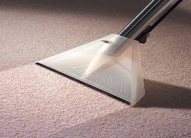What's Lurking in Your Carpets & Vacuuming Is Not Enough