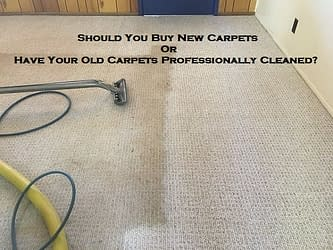 Should You Buy New Carpets Or Have Your Old Carpets Professionally Cleaned?